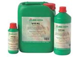 VITAL (250ml.)