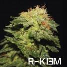 R-Kiem (5R)